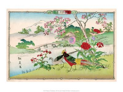 Golden Pheasants and Poppies-Rinsai Utsushi-Art Print
