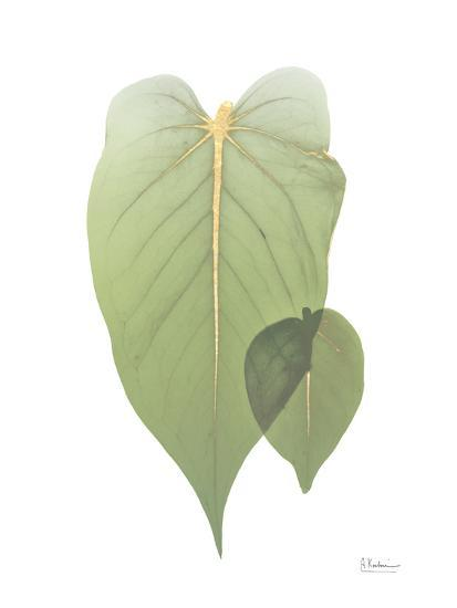 Golden Philodendron 2-Albert Koetsier-Art Print