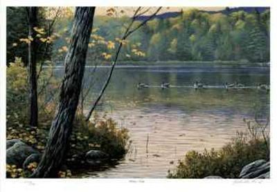 Golden Pond-J. Vanderbrink-Collectable Print