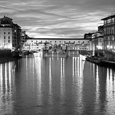 https://imgc.artprintimages.com/img/print/golden-ponte-vecchio-bw_u-l-q1aiqet0.jpg?p=0