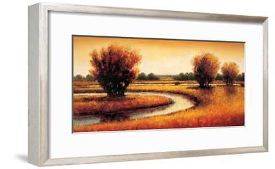 Golden Reflections II-Gregory Williams-Framed Giclee Print