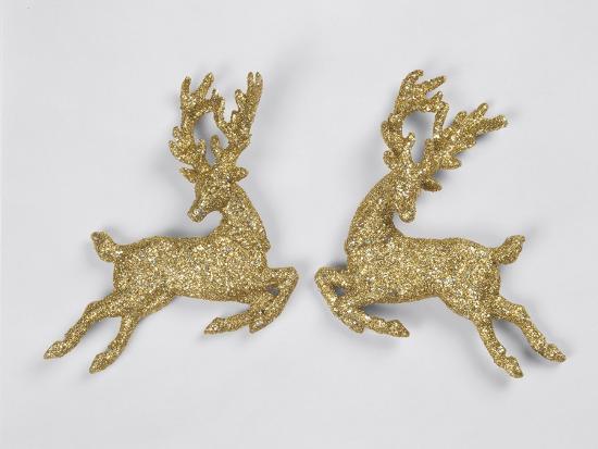 Golden Reindeers--Photographic Print