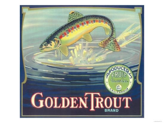 Golden Trout Orange Label - Lindsay, CA-Lantern Press-Art Print