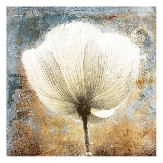 Golden White Blues-Jace Grey-Art Print