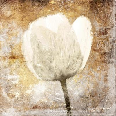 https://imgc.artprintimages.com/img/print/golden-white-greige-mate_u-l-q1bc7y10.jpg?p=0