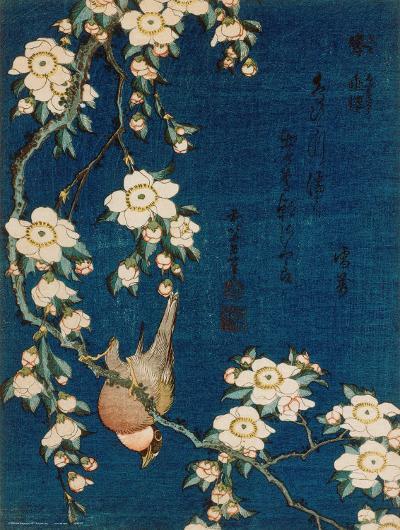 Goldfinch and Cherry Tree, c.1834-Katsushika Hokusai-Art Print