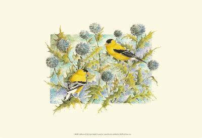 Goldfinches-Janet Mandel-Art Print