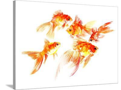 Goldfish5-Suren Nersisyan-Stretched Canvas Print