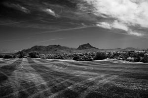 Golf CourseScottsdale Arizona b/w
