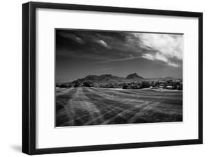 Golf CourseScottsdale Arizona b/w