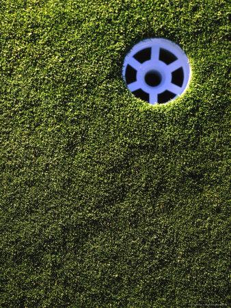 https://imgc.artprintimages.com/img/print/golf-cup_u-l-pxz1gu0.jpg?p=0