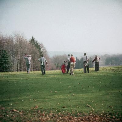 https://imgc.artprintimages.com/img/print/golfers-playing-on-golf-course_u-l-p3lwp20.jpg?p=0