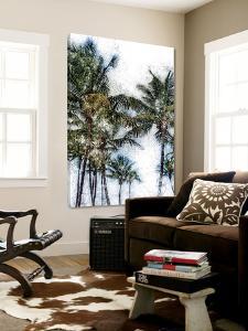 Dorado Palms 2 by Golie Miamee