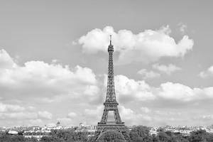 Eiffel From Afar II by Golie Miamee