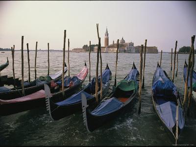 Gondolas at Anchor Line a Shore-Ed George-Photographic Print