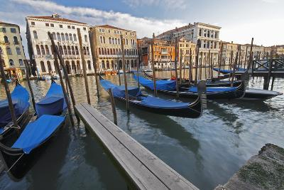 Gondolas Moored on the Grand Canal; Venice Italy-Design Pics Inc-Photographic Print