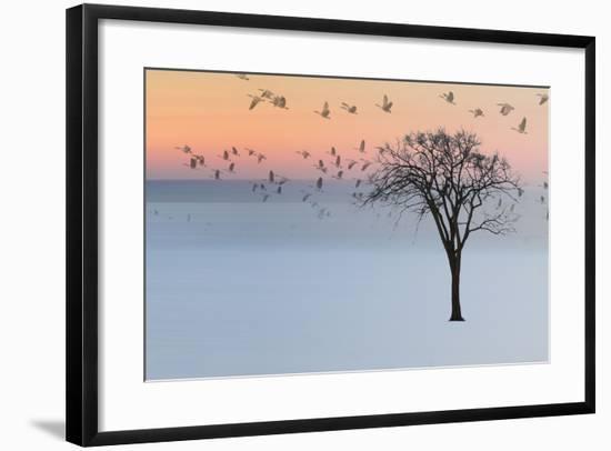 Good Day-Andre Villeneuve-Framed Photographic Print