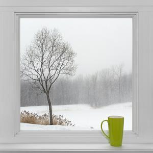 Winter Landscape Seen Through the Window and Green Cup by GoodMood Photo