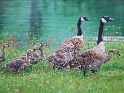 Goose Family Outing-Bruce Dumas-Giclee Print
