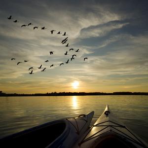 Kayaks On Lake Ontario Sunset by Gordo25