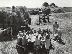 Farmers Having Lunch Brought and Served by Wives During Harvest of Spring Wheat in Wheat Farm by Gordon Coster