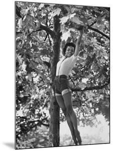 Eartha Kitt Playing in the Tree by Gordon Parks