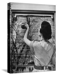 Housewife Cleaning Glass Window Slats by Gordon Parks