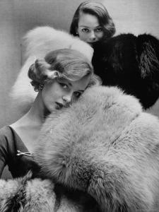 Models Holding Outsize Muffs in Assorted Colors, Selling For $85-$240 by Gordon Parks
