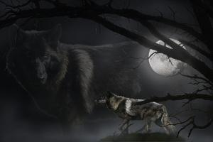 Black Moon by Gordon Semmens