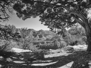 Grand Canyon 08 by Gordon Semmens