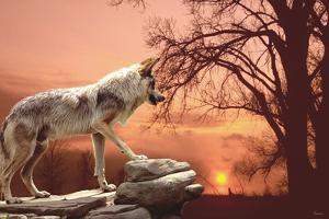 Sunset Ridge by Gordon Semmens
