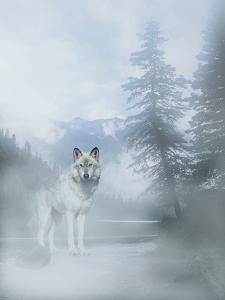 White Mist 2 by Gordon Semmens