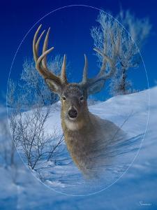 Winterland by Gordon Semmens