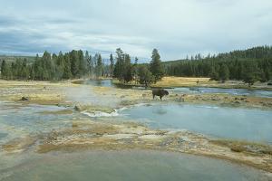 Yellowstone 03 by Gordon Semmens