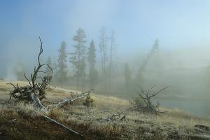 Yellowstone 04 by Gordon Semmens