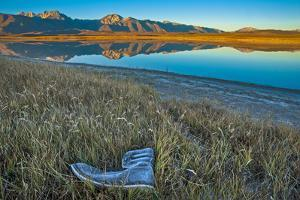 A Frosted, Abandoned Boot in Salt Grass by Big Alkali Lake by Gordon Wiltsie