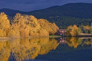Cottonwood and Aspen Trees Surround a House and Mystic Heights Pond by Gordon Wiltsie