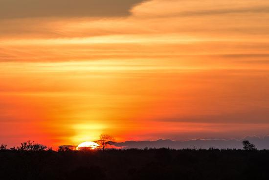 Gorgeous African Sunset in Kruger National Park-Stephen Lew-Photographic Print