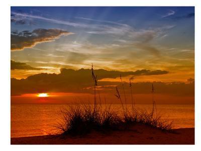 https://imgc.artprintimages.com/img/print/gorgeous-sunset_u-l-f8iswk0.jpg?artPerspective=n