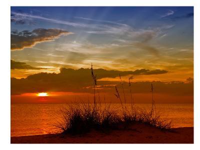 Gorgeous Sunset-Melanie Viola-Art Print