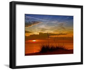 Gorgeous Sunset-Melanie Viola-Framed Art Print
