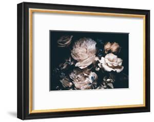 Bouquet of Pink Peonies on a Dark Background by gornostay