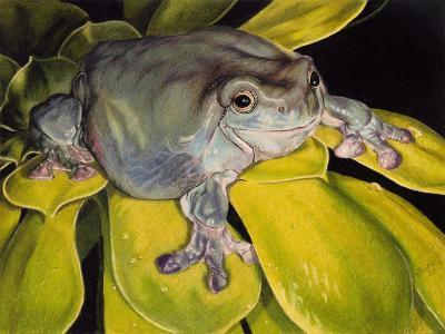 Got Bugs?-Barbara Keith-Giclee Print