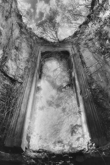 Gothic Window, Castle Bernard, Ireland-Simon Marsden-Photographic Print