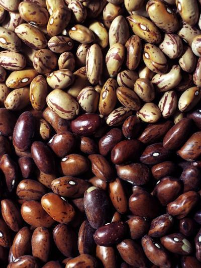 Gourmet - April 2007-Romulo Yanes-Premium Photographic Print
