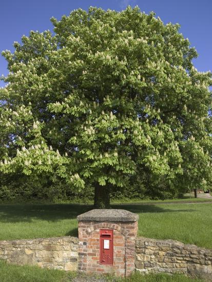 GR Royal Mail Rural Letter Box-Richard Klune-Photographic Print