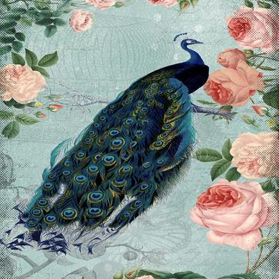 Rose Flowers And Peacock