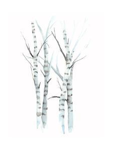 Aquarelle Birches I by Grace Popp