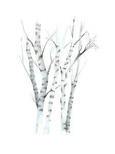 Aquarelle Birches II by Grace Popp