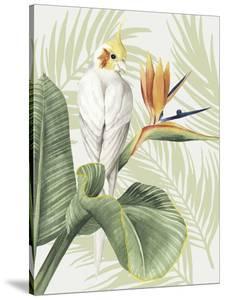 Avian Paradise II by Grace Popp